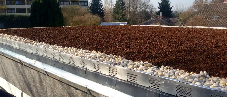 Flachdachsanierung und Erstellung eines Gründaches - Industriegebäude in Wiesbaden